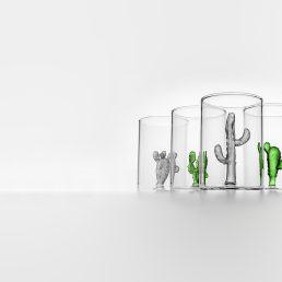 casarialto c69 - cactus glass