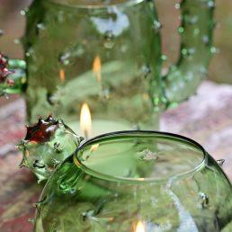 2 lumini cactus