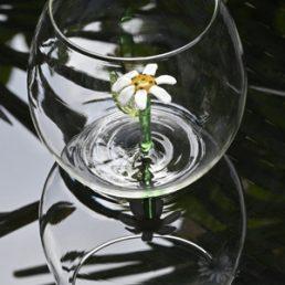 casarialto c160 d flower power glass daisy 2